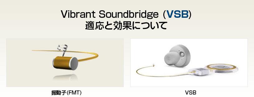 Vibrant Soundbridge (VSB)適応と効果について